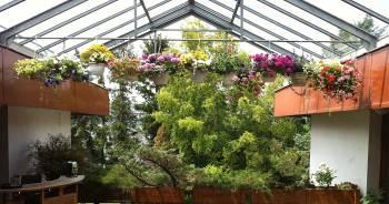 Grüne überdachte Terrasse als Workshopraum mieten